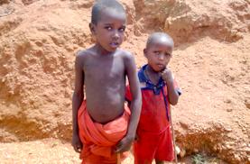 Sécheresse au Kenya